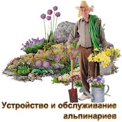 Создание и комплексное сезонное обслуживание альпинариев и рокариев в Истре - Истринском и Красногорском районе.