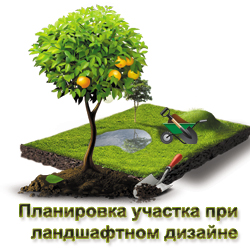 Планировка участка для ландшафтного дизайна в Истринском и Красногорском районе