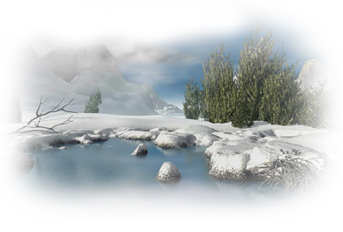 Уход за искуственными водоемами в зимний и осенний период в Истре и Истринском районе